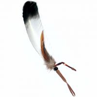 Indianer Räucherfeder weiss mit schwar..