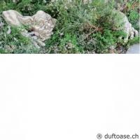 Grosser Troll Gartenfigur