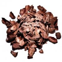 Kakaoschale 50g Elettaria Cardamomum